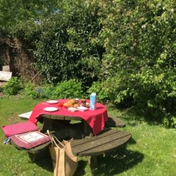 scriptie lunch picknicktafel laag-zuthem