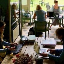 Focusdag mensen werken gefocust achter hun laptop in een huiskamer-setting met uitzicht op veranda en tuin