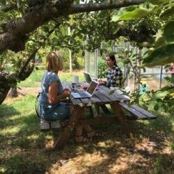 studenten werken buiten aan een picknick tafel aan hun scriptie